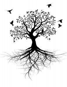 Kranio Sakral Terapi - livstræet